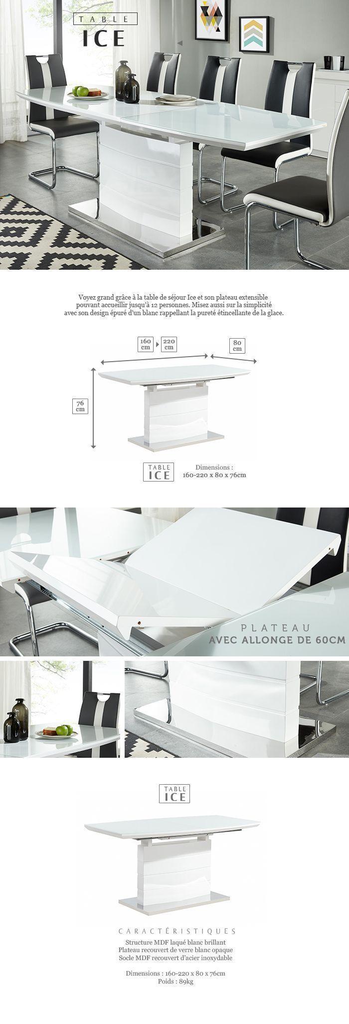 ICE Table à Manger Extensible De 8 à 10 Personnes Style