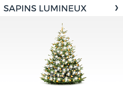 SAPINS LUMINEUX