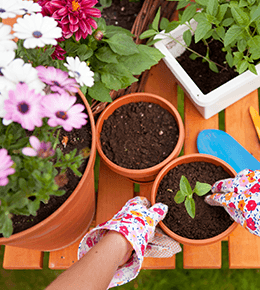 Jardin & Jeux Plein Air