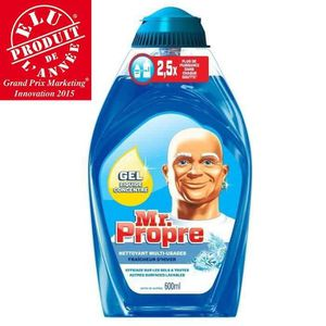 NETTOYAGE MULTI-USAGE MR PROPRE Gel Nettoyant Ménager Hiver 600mL