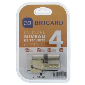 SERRURE - BARILLET BRICARD SERIAL XP 18001 Cylindre 30+30 mm double e