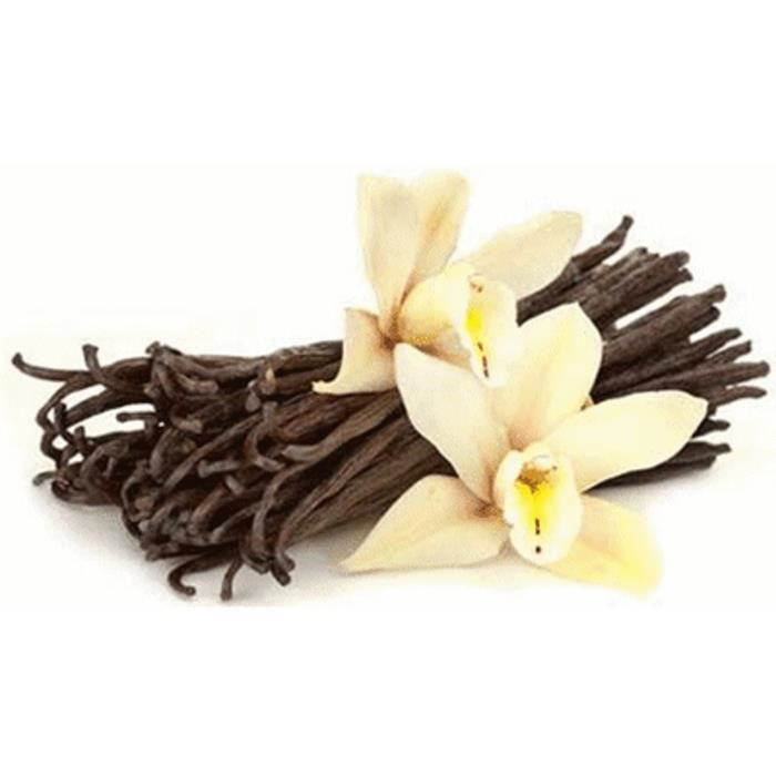 10 gousses de vanille Bourbon de Madagascar qualité Supérieure 12-13 cm SAMBAVA