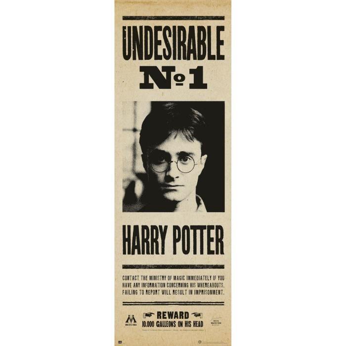 Poster de porte Harry Potter Affiche de recherche