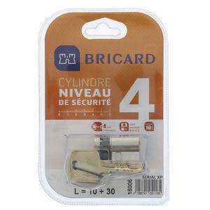 SERRURE - BARILLET BRICARD SERIAL XP 18006 Demi-cylindre 10+30 mm nic