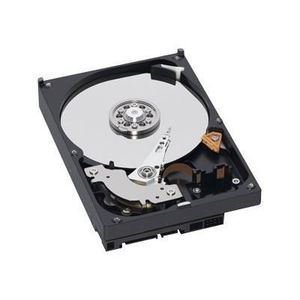 DISQUE DUR EXTERNE  Western Digital WD10EADS 1 To 1 To 32 Mo Seria…