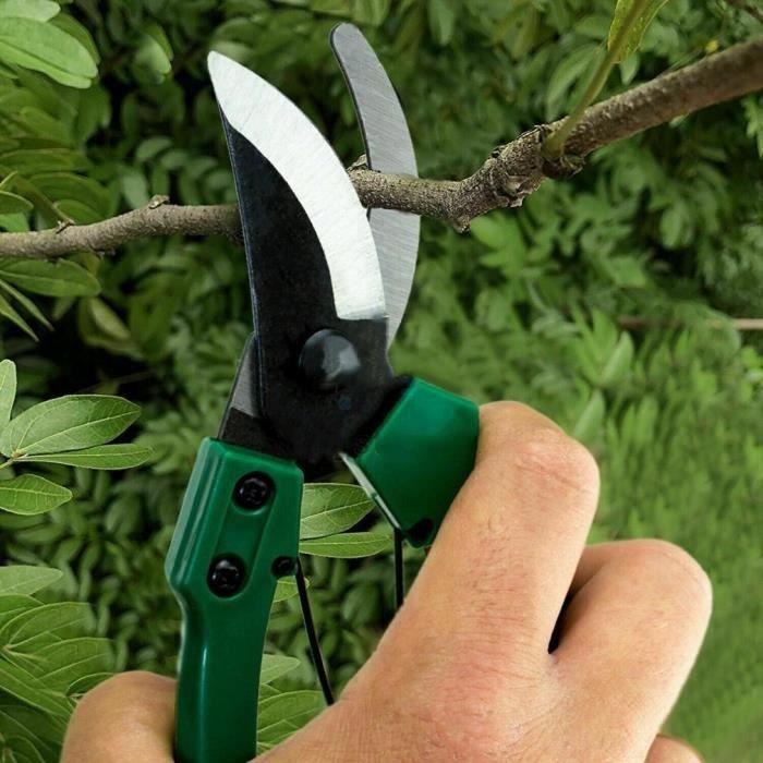 Sécateur fort carbone jardin main sécateur sécateur coupe plantes outil branche cisailles fruits branche ciseaux*YI0347