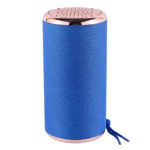 ENCEINTE NOMADE Enceinte Portable Bluetooth haut-parleur étanche s