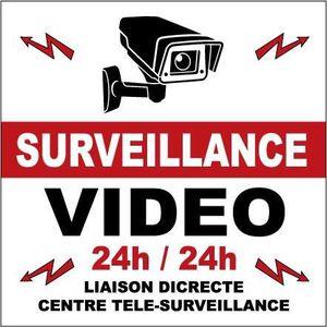ALARME FACTICE lot 2 stickers adhesif vidéosrveillance format car