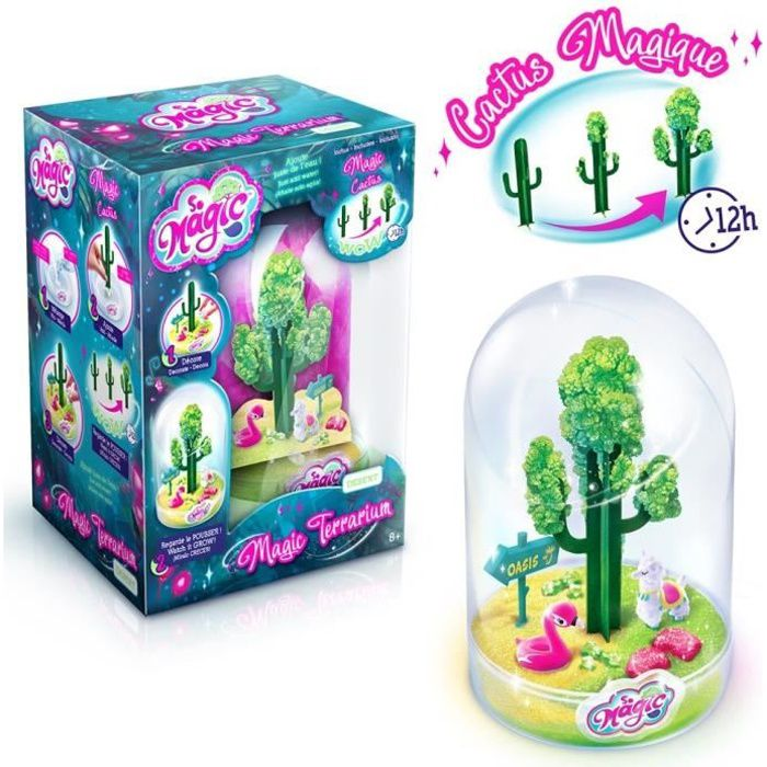 JEU DE SCULPTURE CANAL TOYS - SO MAGIC DIY - Large Terrarium Kit -
