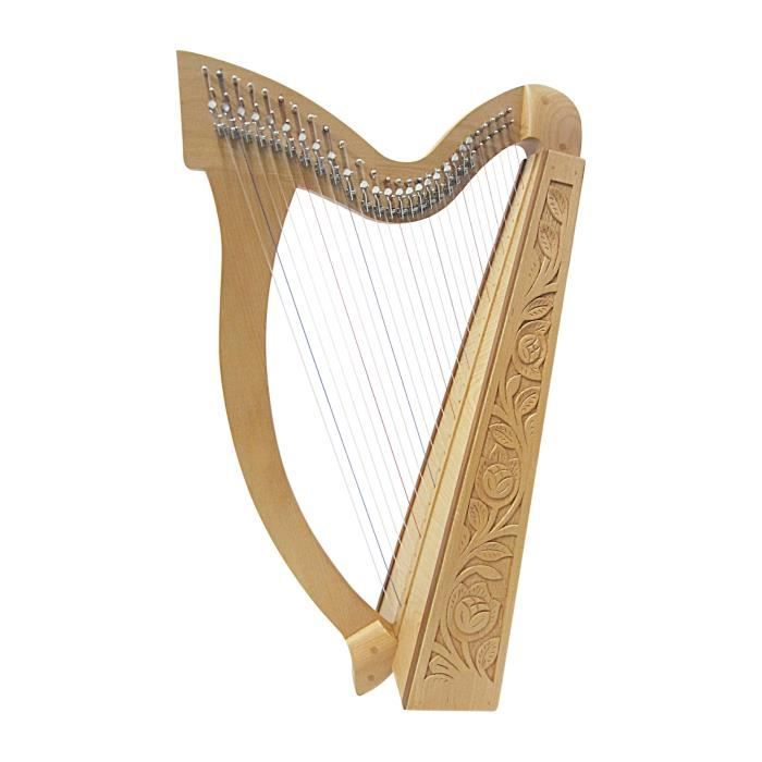 Housse pour harpe celtique 27-string