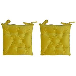 COUSSIN DE CHAISE  Lot de 2 galettes de chaise velours 8 points - 40x