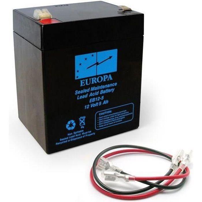 ACCESS MOTEUR PORTAIL AVIDSEN Batterie rechargeable pour motorisation de