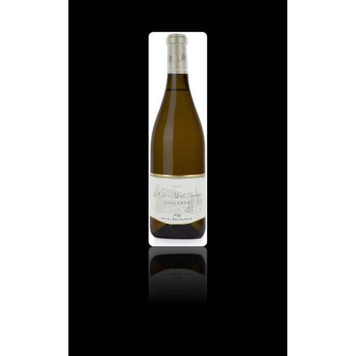 Vin, blanc, Domaine Henri Bourgeois, la cote des Monts damnes 2018 Blanc