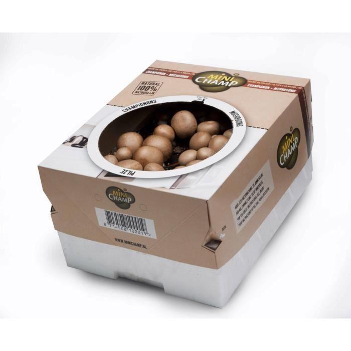 Kit culture champignons bruns Minichamp 7.5 lit...