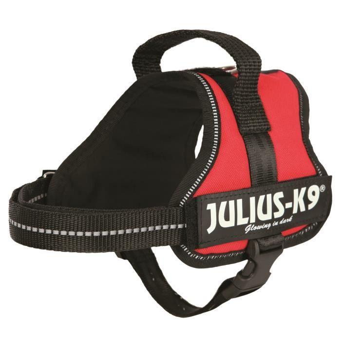 Harnais Power Julius-K9 - Mini-Mini - S : 40-53 cm-22 mm - Rouge - Pour chien