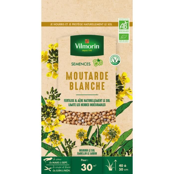 Graines de Moutarde blanche BIO , sachet de 60 grs-