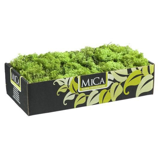 mousse naturelle verte 500 gr achat vente fleur artificielle cdiscount. Black Bedroom Furniture Sets. Home Design Ideas