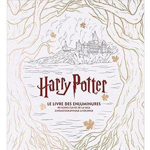 LIVRE 0-3 ANS ÉVEIL Livre - Harry Potter ; le livre des enluminures ;