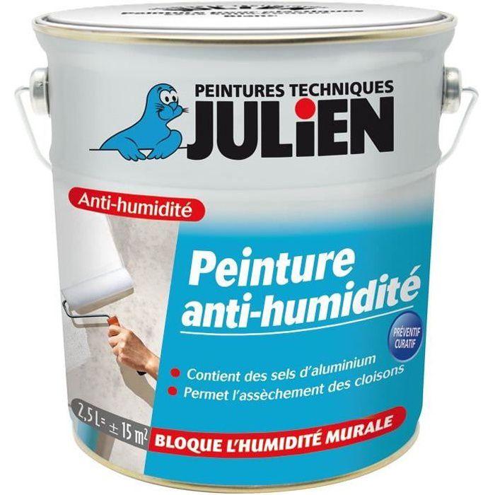 Peinture Anti Humidité Murs Intérieurs 2 5 L