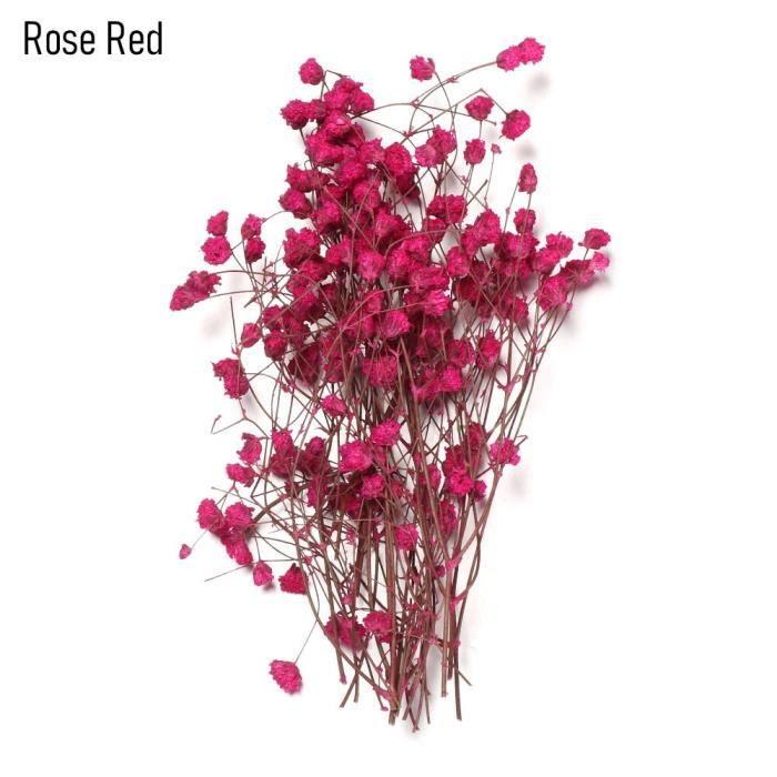 1 sac coloré décoratif naturel séché Bouquets gypsophile Mini vraie fleur plante tiges Photo accessoires maison décorati ES0397