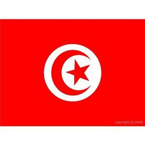 DRAPEAU DÉCORATIF Drapeau Tunisie
