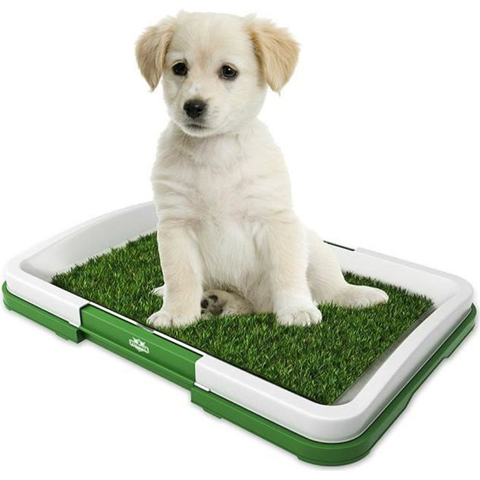 Toilette pour chien avec pelouse,Petite toilette pour chien en filet