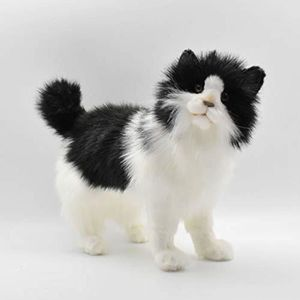 PELUCHE Peluche MBQTO  chat, noir - blanc