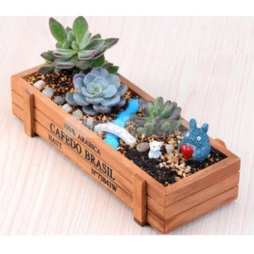 Bo?te de rangement décorative en bois pour jardinière de plantes succulentes en bois d'intérieur/extérieure de pot de jardin