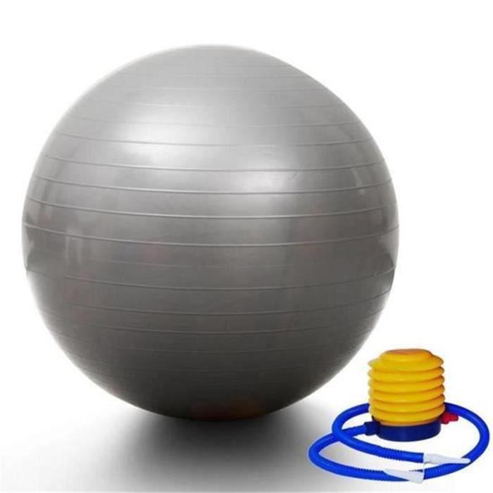 Ballon de gym 65 cm avec Pompe - Ball Ballon Fitness Ballon de gymnastique/grossesse Balle de Balance