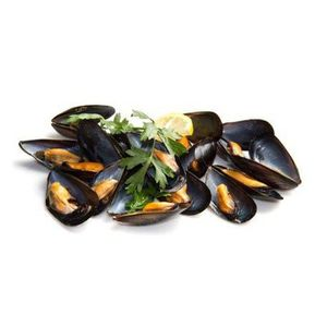 COQUILLAGE  Moule de Hollande  lot 4 kg