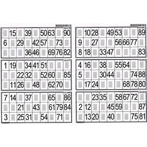 LOTO - BINGO PLAQUE DE 6 GRILLES DE LOTO - LOTOQUINE - ACCES…