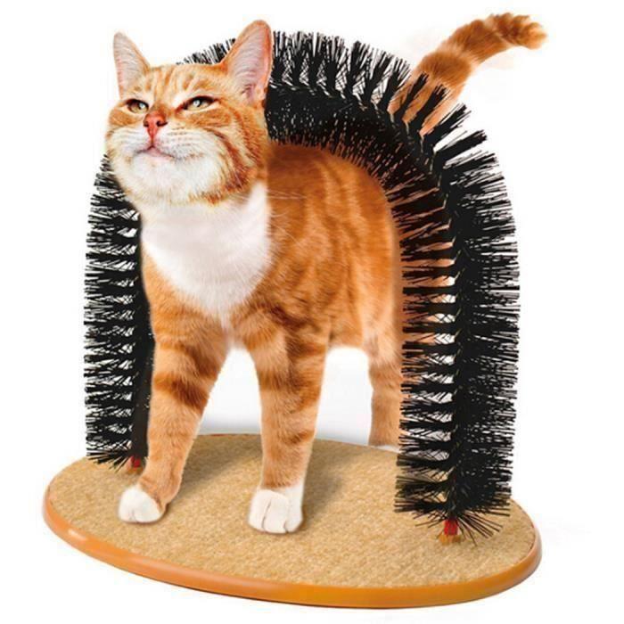 griffoir chats peigne chat brosse jouets chat pour chaton Y539 M0C5D0