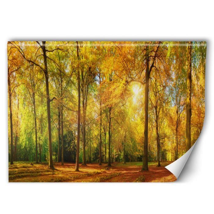 Feeby Papier peint intissé automne Poster mural Colle fournie orange 400x266 cm