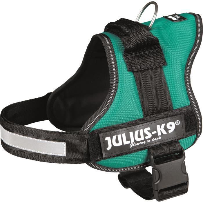 Harnais Power Julius-K9 - 0 - M-L : 58-76 cm-40 mm - Vert - Pour chien