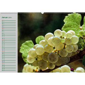 VIN BLANC CD-90781 Rheingau - Riesling Tr A2 quer