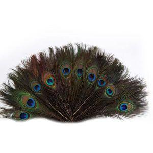Rouge argent plume de paon cheveux clip plume demoiselle d/'honneur 1920s bandeau 227