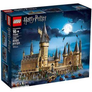ASSEMBLAGE CONSTRUCTION LEGO® Harry Potter™ 71043 Le Château Poudlard™