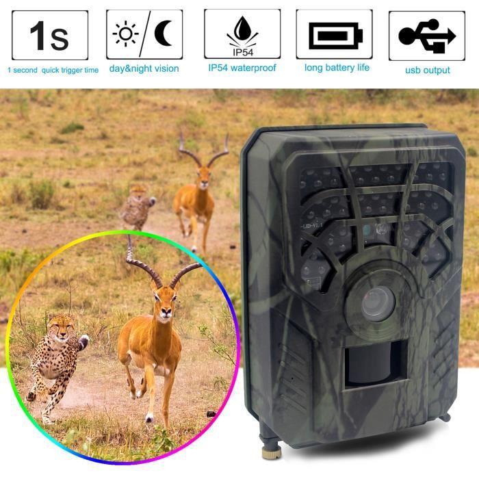 Détecteur de chasse HD Surveillance caméra étanche à induction infrarouge rouge extérieur webcam096