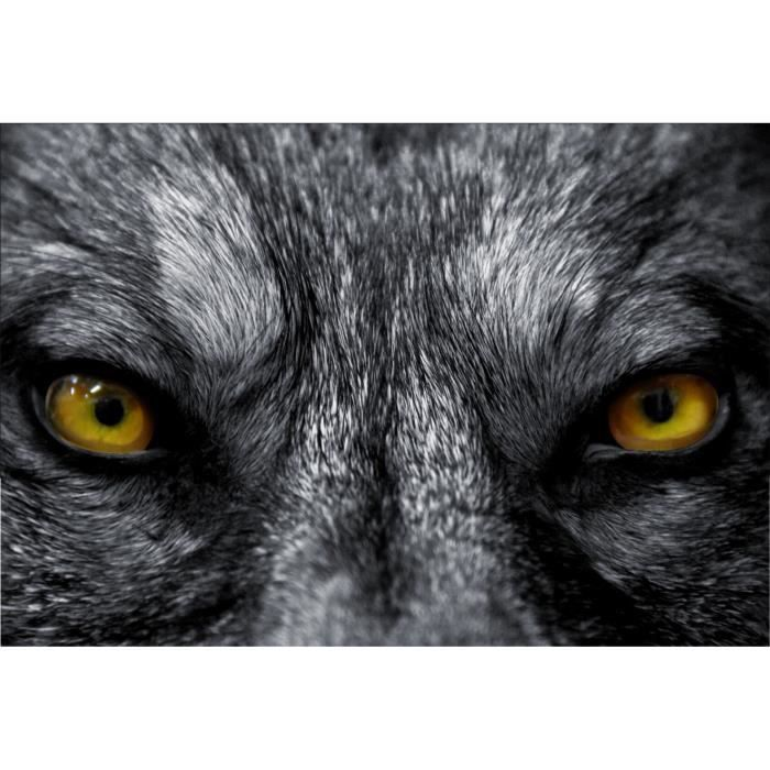 Stickers muraux d co yeux de loup dimensions 110x160cm for Decoration murale loup