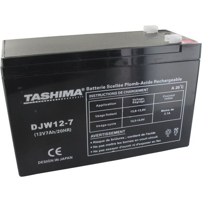 Batterie DJW127 + à gauche pour CASTELGARDEN - FLYMO - ROVER - WOLF