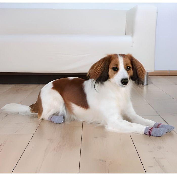 Trixie Chaussettes pour chiens (Taille: L-XL