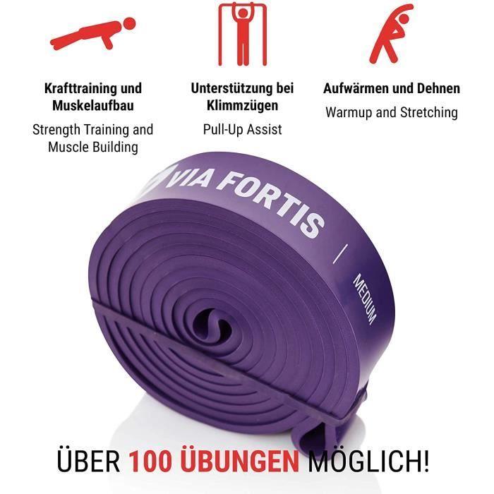 VIA FORTIS Bande Élastique Musculation [avec Instructions d'exercices et Sac de Transport] Resistance Band, Bandes Élastiques pour F
