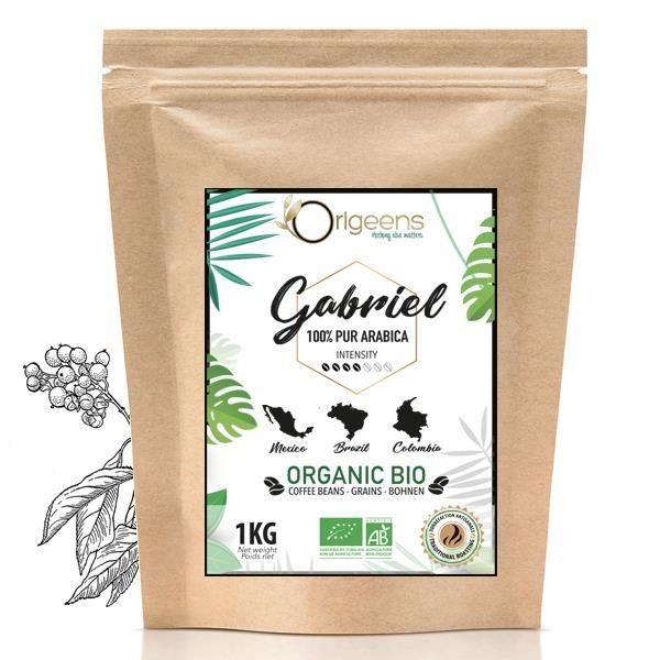 ☘️ CAFE GRAIN BIO 1kg - Café en Grain Arabica - Torréfaction Artisanale - Gabriel