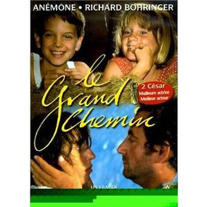DVD FILM DVD Le grand chemin