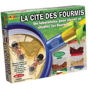 EXPÉRIENCE SCIENTIFIQUE BSM - Jeu éducatif - La Cité Des Fourmis
