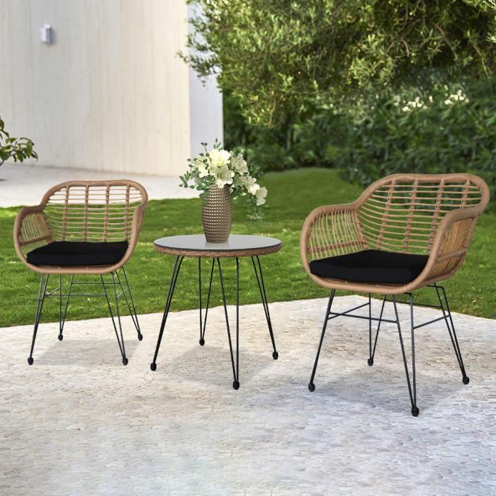 Oshino Ensemble Salon de Jardin Fauteuil de Jardin En Résine Rotin avec Table en Verre 2 Places