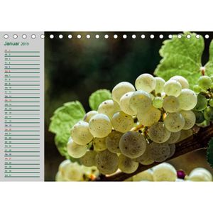 VIN BLANC CD-35706 Rheingau - Riesling Tr A5 paysage