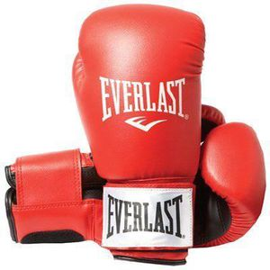 GANTS DE BOXE Everlast Rodney 1803 14 oz ...
