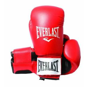 GANTS DE BOXE Everlast Rodney 1803 12 oz ...