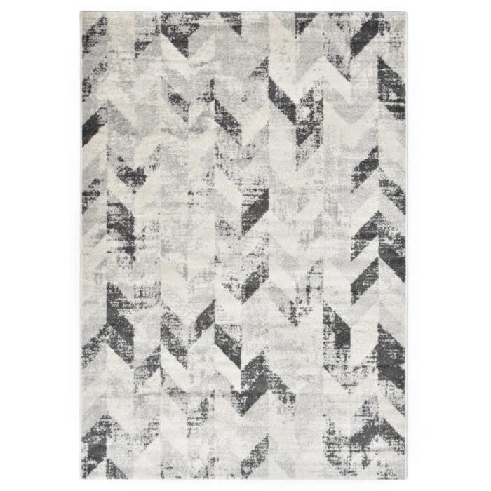 Tapis Tapis de sol Tapis de salon Gris et blanc 160x230 cm PP